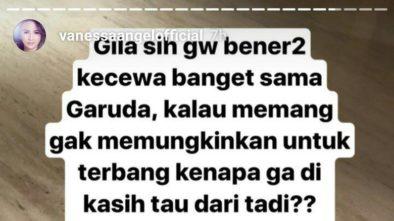 Vanessa Angel Ngamuk Seret Nama Jokowi, Habiburokhman Ikut Komporin