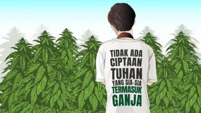 Membongkar Mitos, LGN Ingin Ganja Dilegalkan di Indonesia